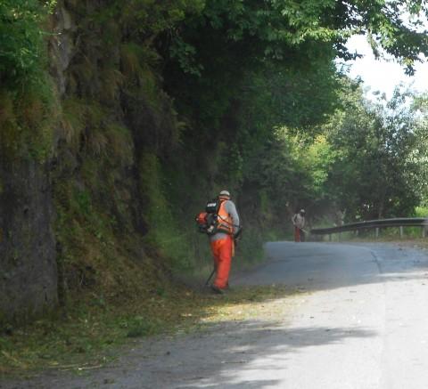 Taglio erba su strade provinciali