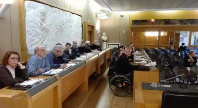 Consulta Disabilità